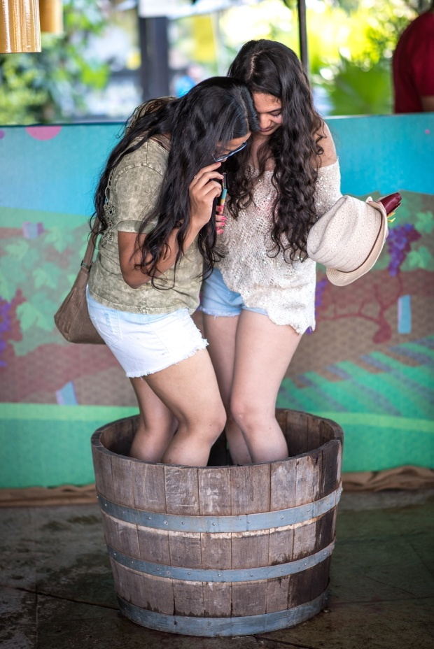 low res Grape Stomping at SulaFest 2016