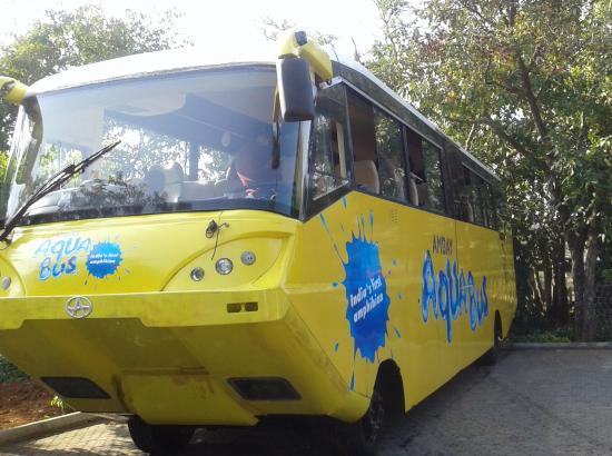 aqua-bus